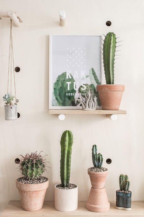 decoración tendencia cactus